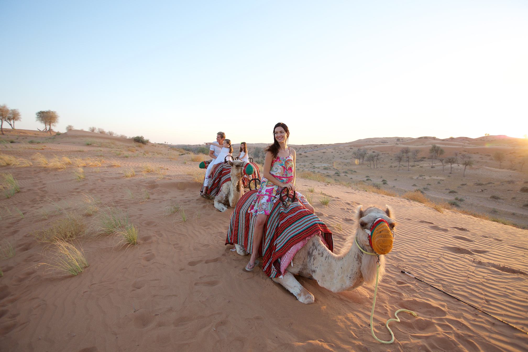 Private Morning Desert Safari With Camel Ride