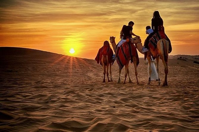 Morning Safari With Camel Ride And Sand-boarding